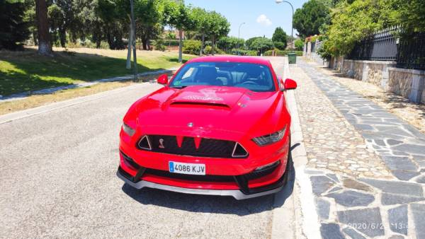 Mustang 7 Tuning Rieger