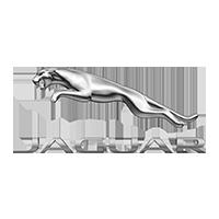 jaguar Tuning Rieger