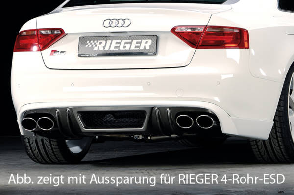 00099889 Tuning Rieger