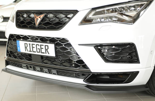 00027044 7 Tuning Rieger