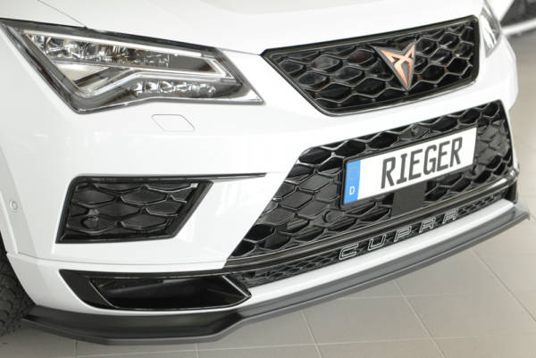 00027044 91 Tuning Rieger