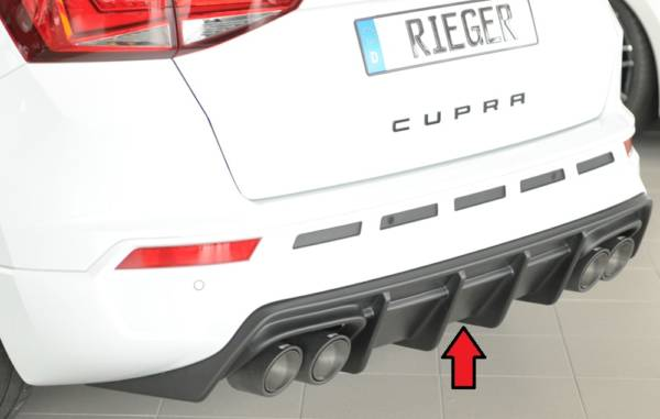 00027045 Tuning Rieger