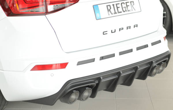 00027045 2 Tuning Rieger