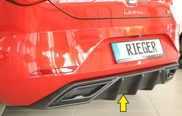 00027055 Tuning Rieger