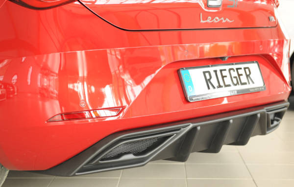 00027055 2 Tuning Rieger
