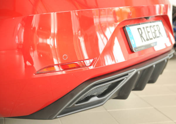 00027055 3 Tuning Rieger