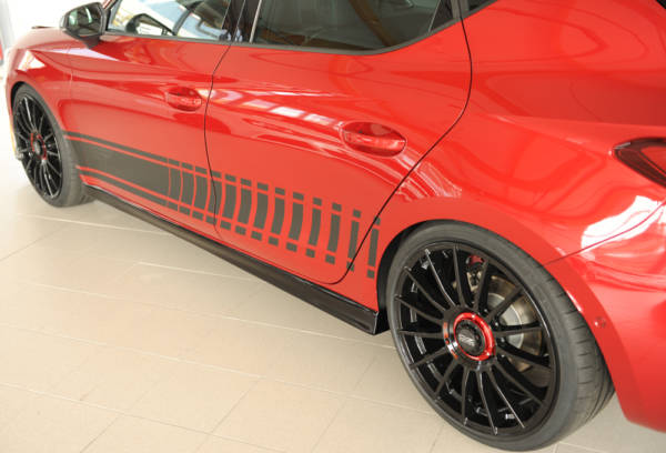 00088223 3 Tuning Rieger