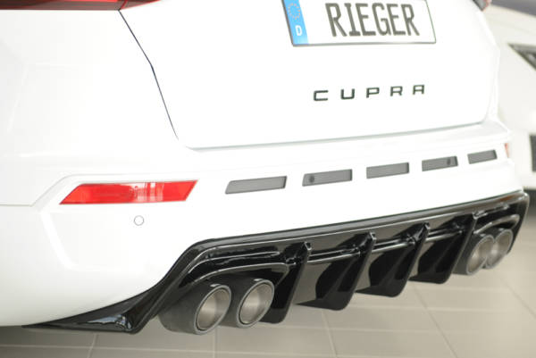 00088228 3 Tuning Rieger
