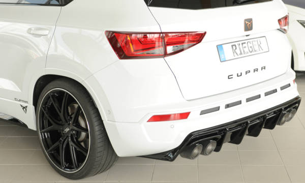 00088228 6 Tuning Rieger