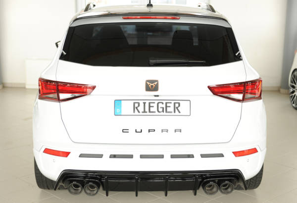 00088228 8 Tuning Rieger