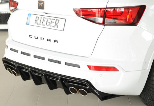 00088228 92 Tuning Rieger