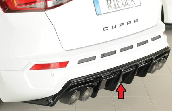 00088231 Tuning Rieger
